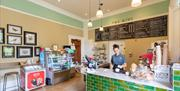 The Hive Cafe, Chelmsford Museum