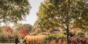 Enjoy an autumn stroll at Hyde Hall
