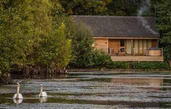 Water Lily Lodge