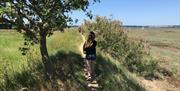 Wrabness Coastal Walk