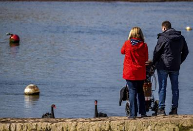 The Family Guide to a Day Out in Topsham