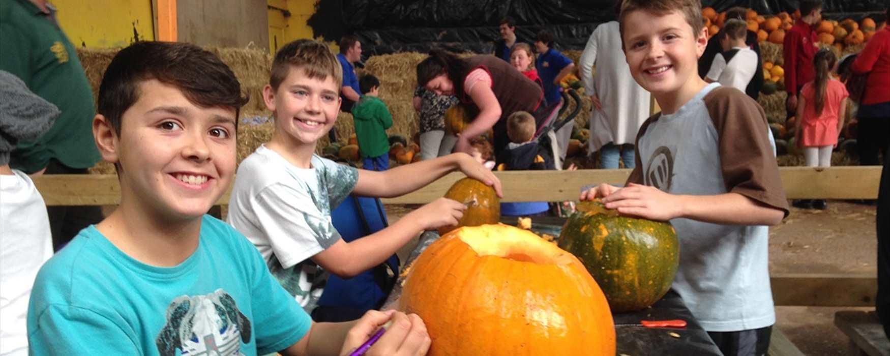 Halloween activities at Crealy