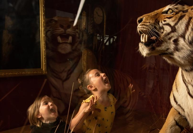 Family Fun in Exeter this October Half Term
