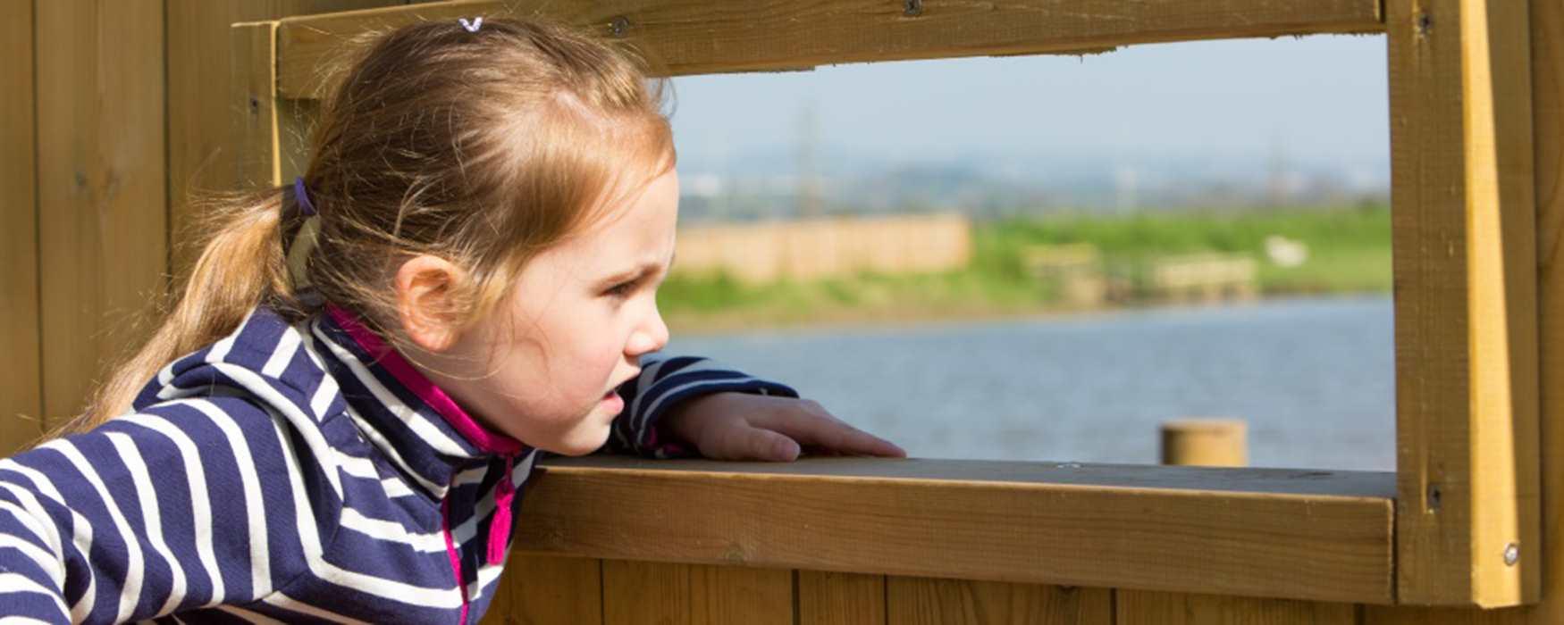 Bird Watching in Exeter