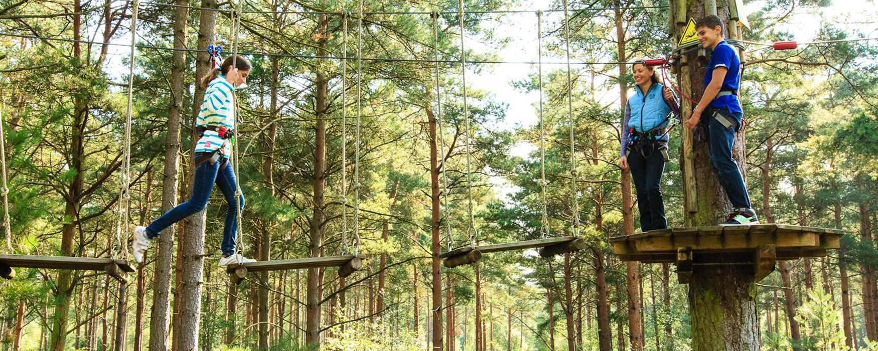 Person in the trees at Go Ape!