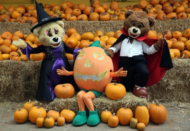 Halloween Events in Exeter