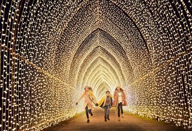 Christmas Trail at Killerton