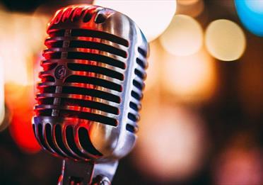 Vintage microphone