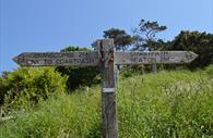 Coastal Path signage