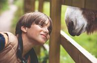 Boy enjoys a special moment with donkey