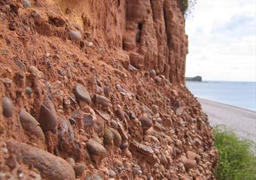 Budlaigh Salterton Cliffs-Richard Edmonds, Dorset