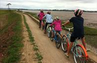 Exe Estuary Trail - cycling near Darts Farm