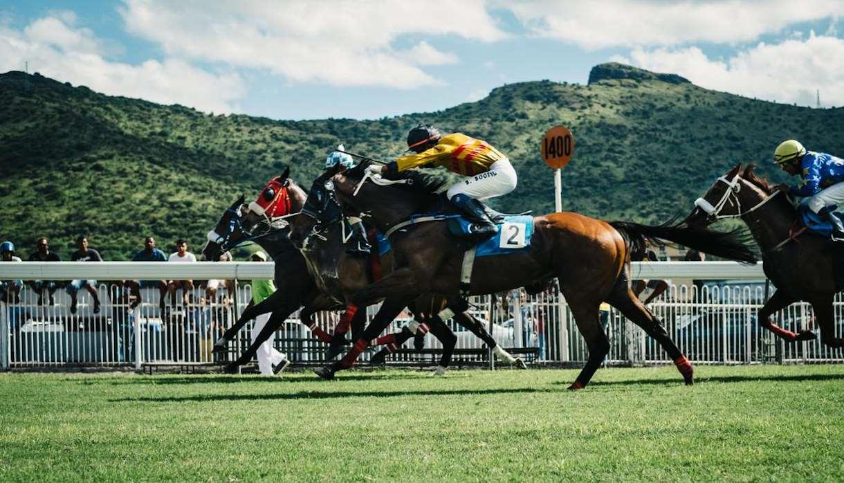 Colorful jockeys in horse race