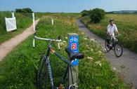 Exe Estuary Trail. Copyright: Devon County Council