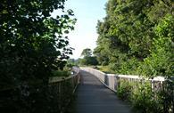 Exe Estuary Trail wooden bridges (c) mathilde le floch
