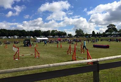 Paignton & District Fanciers Association Championship Dog Show