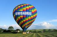 A filled Aerosaurus balloon landed on the ground