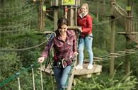 Go Ape Haldon Forest - people walking on the bridge
