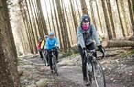 Group of cyclists in the forest