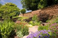 Fursdon Garden path