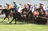 Horse Racing at Devon County Show