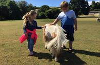 Two children petting a pony in a field