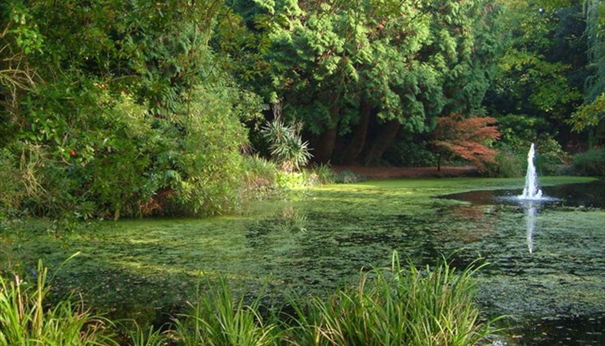 Exeter University Gardens