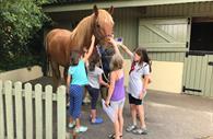 Children petting horse