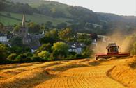 Sidbury Harvest