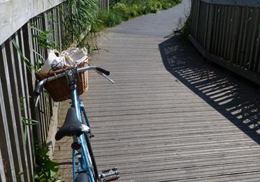 Exe Estuary Trail, vintage bike (c) mathilde le floch