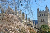 Curious About Exeter - Exeter Cathedral in Spring