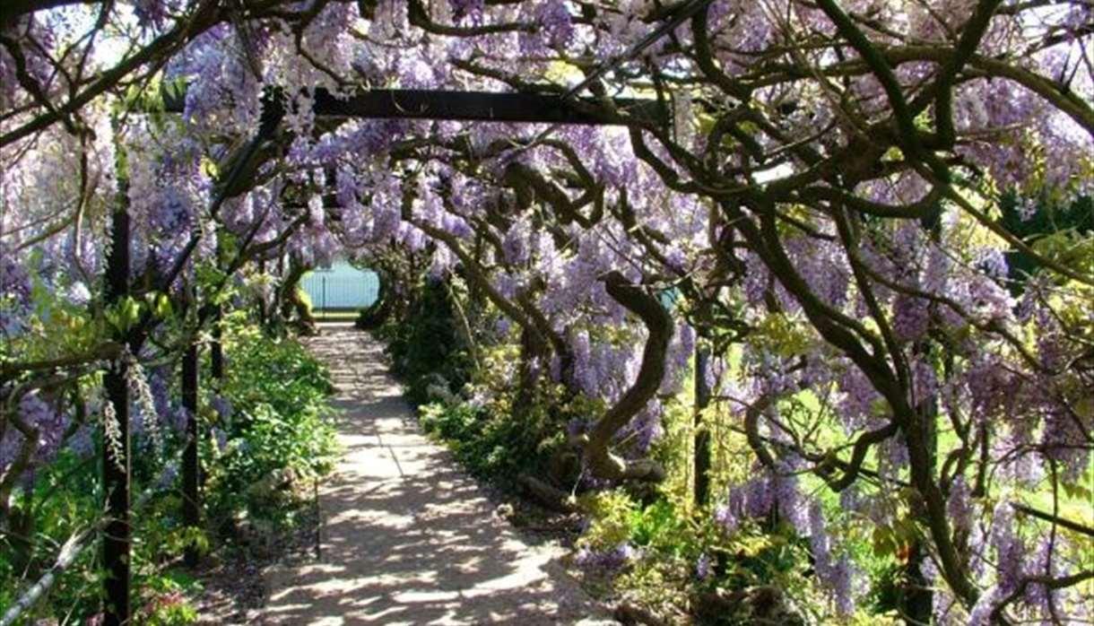 Pinces Garden