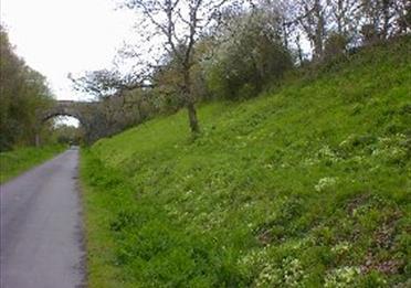 Tarka Trail (c) DCC
