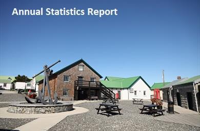Thumbnail for Statistics Reports