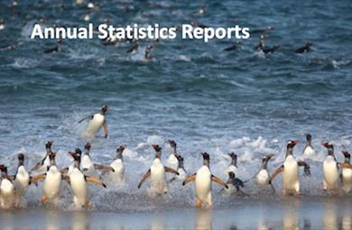 Thumbnail for Statistics Reports