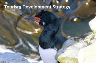 Thumbnail for Tourism Development Strategy