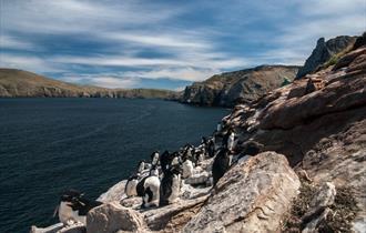 Kelper Tours - Falkland Islands - West Falklands