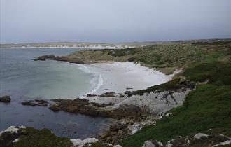 One of the Falkland Islands' many remote, sandy beaches
