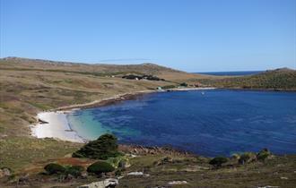 Glorious Falklands' beaches