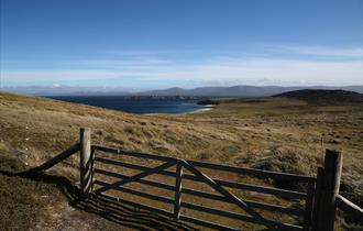 Classic landscape in the Falklands