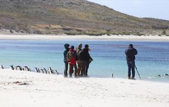 Photographing penguins in the Falklands