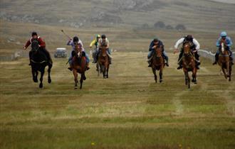 Stanley Race Meeting - Falkland Islands