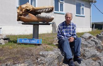 Whalebone Display