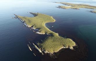 Kidney Island_Sulivan Shipping_Falkland Islands