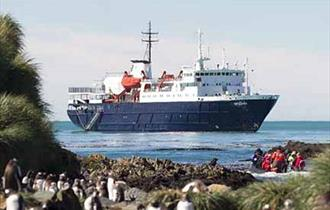Expedition cruising in the Falklands