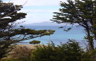 Landscape of the Falkland Islands