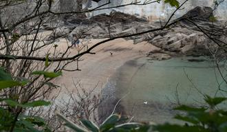 Readymoney Cove Beach