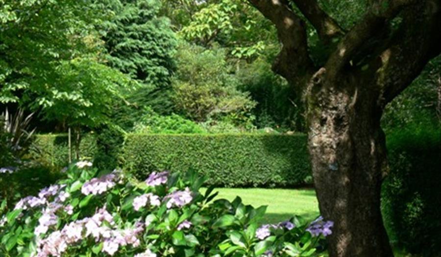 Marsh Villa Garden, Par, Cornwall