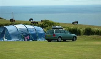 Polruan Holidays Camping & Caravanning
