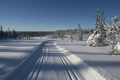 Cross-country skiing from Raufoss